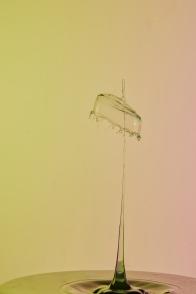 grama's-lampshade